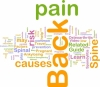 Back Pain and Weight Loss