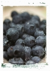 Berries for Health, Berries for Weight Loss