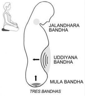 What Are The Bandhas?