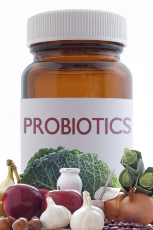 Probiotics and Prebiotics - Gut Bacteria Explained